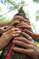 Hände am Baum
